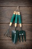 picture of household farm  - closeup gardening tools hanging on the wall - JPG