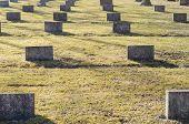 stock photo of empty tomb  - Memorial To Soldiers - JPG