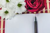 foto of single white rose  - white paper sheet and bouquet of red roses and white daisy - JPG