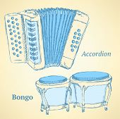 image of accordion  - Sketch bongos and accordion in vintage style vector - JPG