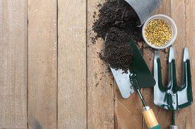 image of spade  - gardening background - JPG