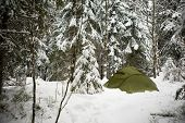 A tent in the forest during winter