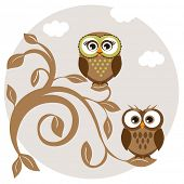 Cute owls couple on the tree