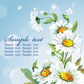 White daisywheels on blue background. Floral vintage wallpaper.