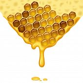 Flowing honey background. Vector illustration.