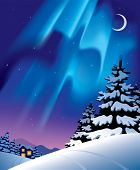 Vector winter landscape with the northern lights