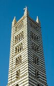 Tower In Medieval Tuscan Town Of Siena poster