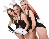 three sexy playgirls with bunny ears looking at laptop display