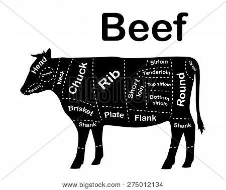 Meat Cuts Beef Diagrams For