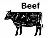 Meat Cuts - Beef. Diagrams For Butcher Shop. Scheme Of Beef. Animal Silhouette Beef. Guide For Cutti poster