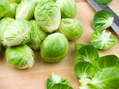 pic of brussels sprouts  - Cleaned brussel sprouts on a wooden cutting board with exterior leaves and a knife - JPG
