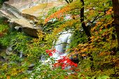 Beautiful Brandywine water falls in Cuyahoga valley Ohio