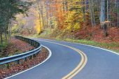 Curvy road through colorful autumn trees in autumn time