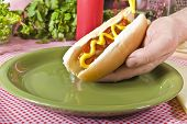 stock photo of hot dog  - Hand Holding Hot Dog Over Green Plate With Mustard and Ketchup On The  - JPG