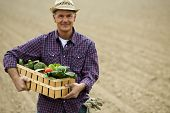 stock photo of crate  - Farmer carrying  a crate of vegetables - JPG