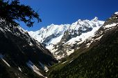 image of firn  - The mountains in the spring and summer General condition of spring and summer in the mountains