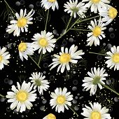Vector Botanical Seamless Pattern With Chamomile Flowers On Black. Modern Floral Pattern For Natural poster