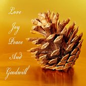 some wishes, as love, joy, peace and goodwill, with a pine cone on a golden background