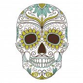 stock photo of voodoo  - Day of The Dead colorful Skull with floral ornament - JPG