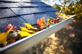 stock photo of clog  - Rain gutter full of autumn leaves - JPG