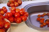 Fresh wet tomatoes on a plate prepared for pasteurization