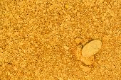 Natural Placer Gold