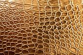 Tint Golden Crocodile Skin Texture