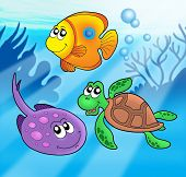 Cute Marine Animals poster
