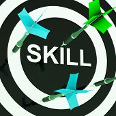 Skill On Dartboard Shows Competencies