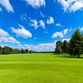 Zomer landschap met groene park gazon en blue sky