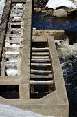 Close View Fish Ladder