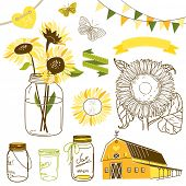 image of sunflower  - Glass Jars - JPG