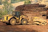 stock photo of wheel loader  - Small wheeled loader moving logs around the log yard at a local sawmill in Oregon - JPG