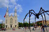 Notre-Dame Cathedral Basilica and Maman