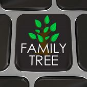 A computer keyboard key with the words Family Tree and picture to symbolize researching your ancesto