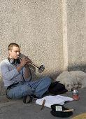 Calle trompetista