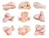 Set Of Raw Chicken Legs And Whole Chicken