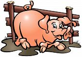 foto of wallow  - Pig vector wallows in dirt complacent much fats meat farm home animal - JPG