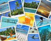 snapshots of tropical destinations