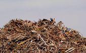 Scrap Metal Processing Industry