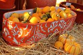small gourds and punpkins in ceramic bowl