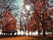 Campgrounds In Autumn