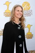 LOS ANGELES - JUN 26:  Lindsay Wagner at the 40th Saturn Awards at the The Castaways on June 26, 201