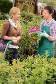 Garden center worker selling potted flower to customer woman shopping