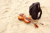 Baggage of musician