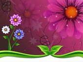 Flowers Background Means Flowering And Outside Beauty.