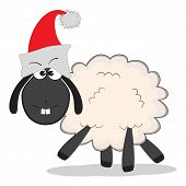 Christmas Funny Sheep With Red Cap