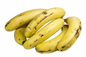 Bunch Of Ripe Yellow Bananas As A Healthy Snack