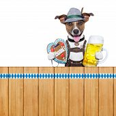 Bavarian Beer Dog
