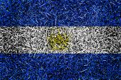 El Salvador Flag Color Grass Texture Background